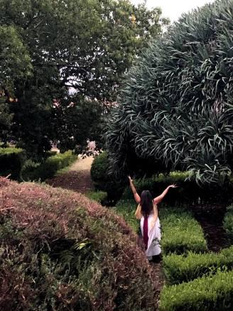 Jardim Botanico 02