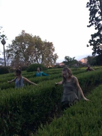 Jardim Botanico 05